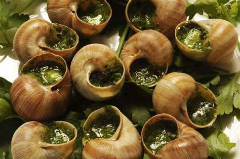 escargot cuisiné food snails cuisine