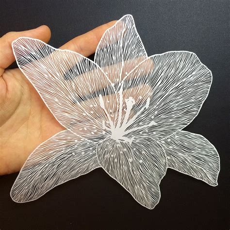 paper cutting new delicate cut paper flowers by maude white colossal