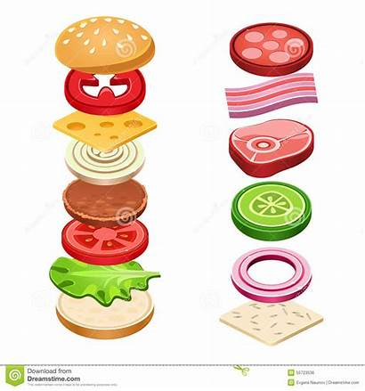 Sandwich Ingredients Cartoon Illustrazione Ingredienti Alimento Panino
