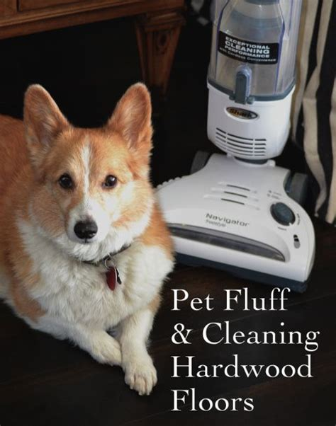 pet cleaner for hardwood floors 12 best cordless vacuums for pet hair images on pinterest vacuum cleaners vacuums and