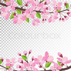 Cherry blossom background Pink spring flowers frame