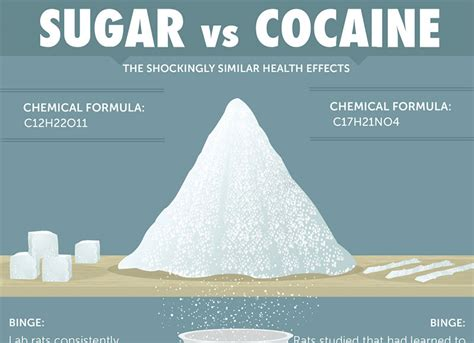 Why Sugar is as Bad as Cocaine - Dr. Sam Robbins