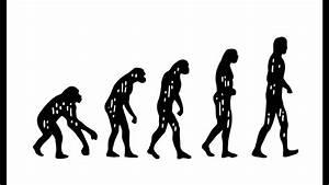 What Is Darwin U2019s Theory Of Evolution