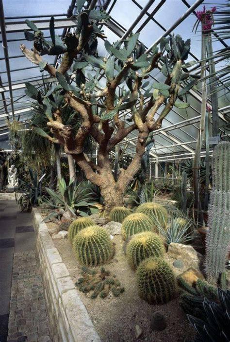 Botanischer Garten Köln Anfahrt by Botanischer Garten K 246 Ln Alte Flora In K 246 Ln