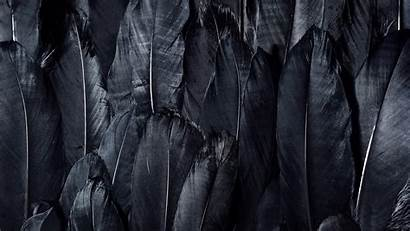 4k Dark Wallpapers Uhd Feathers Cave