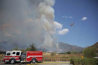 Fire Reveal Gender Damage Caused Did Wildfire