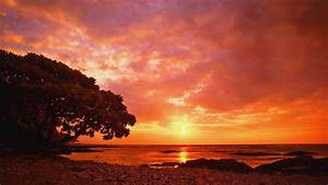 41, Nature, Sunset, Wallpaper, Hd, On, Wallpapersafari
