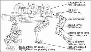 Swiss Robotics Engineers Create A Better Robot  U2014 Based On
