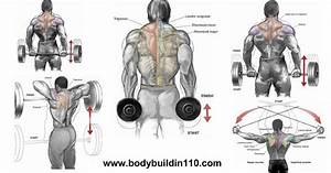 4 Best Trapezius Exercises For Size And Strength