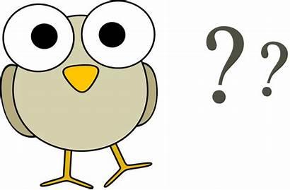 Clipart Questions Question Clipartix Marks Animals Bird