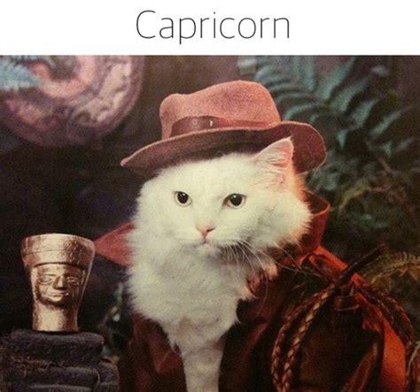 memes    capricorn sayingimagescom