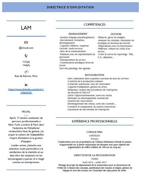 Des Cv Professionnel by Presentation D Un Cv Professionnel Modele De Cv