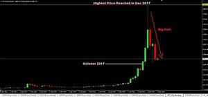 Price Of Bitcoin Chart Forex Trading Forex Trading