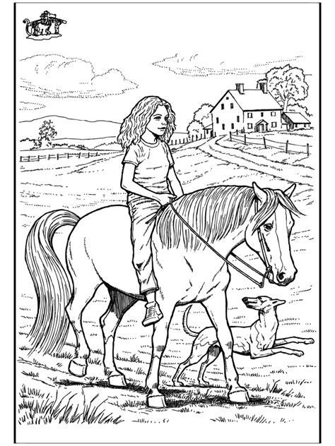 horseriding  horses
