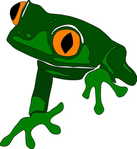 Frogs Clipart Frog Clipart Clipartion