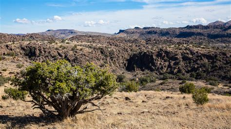 chihuahuan desert   mystic travels photography