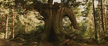 """The Cinematography of """"Pan's Labyrinth"""" (2006 
