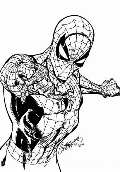 Spiderman Inks Skipper Deviantart Line Warm Comics