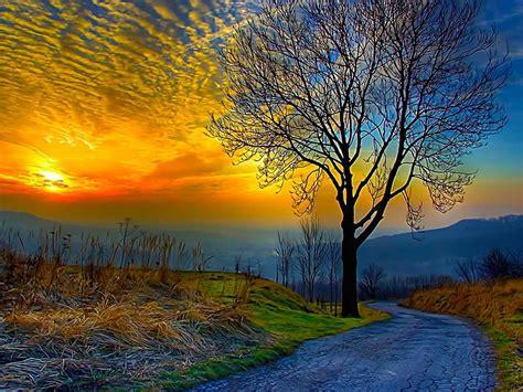 Amazing Sunset Hd Wallpaper 533649 : Wallpapers13.com