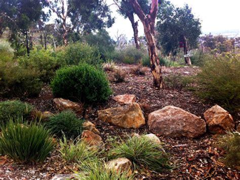 landscaping  local plants wild  gardens