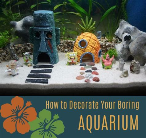 awesome diy aquarium ideas   full  creativity