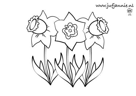 Kleurplaat Narcis by Leuke Kleurplaten Voor Kinderen Bij Thema Lente