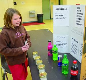 Creative projects the norm at the OES Science Fair | Ogle ...