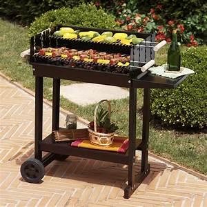 Barbecue Charbon De Bois Pas Cher : barbecue electrique gaz ou charbon ~ Dailycaller-alerts.com Idées de Décoration