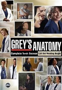 Subscene - Grey's Anatomy - Tenth Season Farsi/Persian ...