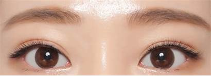 Brown Dali Chocolate Neo Lenses Circle Lens