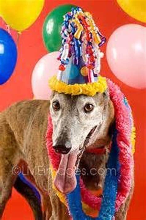 images  happy birthday katy king  pinterest