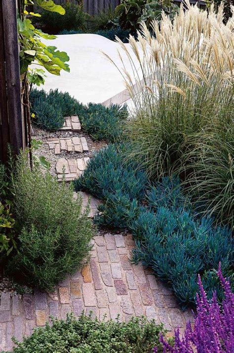 coastal garden design ideas    home