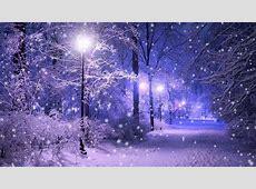 Обои зимняя пора, снег, зима, фонари, вечер, дорожка