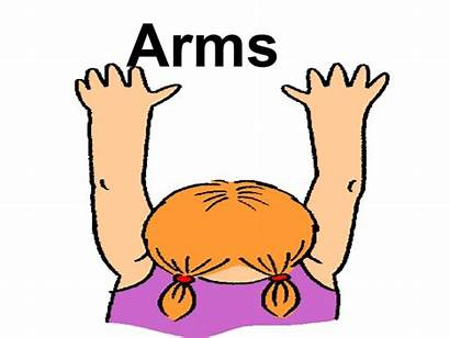 Arms Clipart Parts Vocabulary Webstockreview Phpapp01 Legs