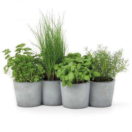 fines herbes en pot interieur jardini 232 re design en b 233 ton pot en b 233 ton pour plantes aromatiques potpot konstantin slawinski