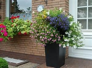 Blumenkübel Bepflanzen Vorschläge : blumenk bel 63 wundersch ne beispiele ~ Frokenaadalensverden.com Haus und Dekorationen