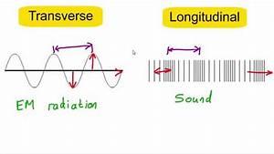Transverse Vs Longitudinal Waves