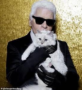 Choupette Chat Karl : karl lagerfeld 39 s cat choupette could inherit the designer 39 s fortune daily mail online ~ Medecine-chirurgie-esthetiques.com Avis de Voitures
