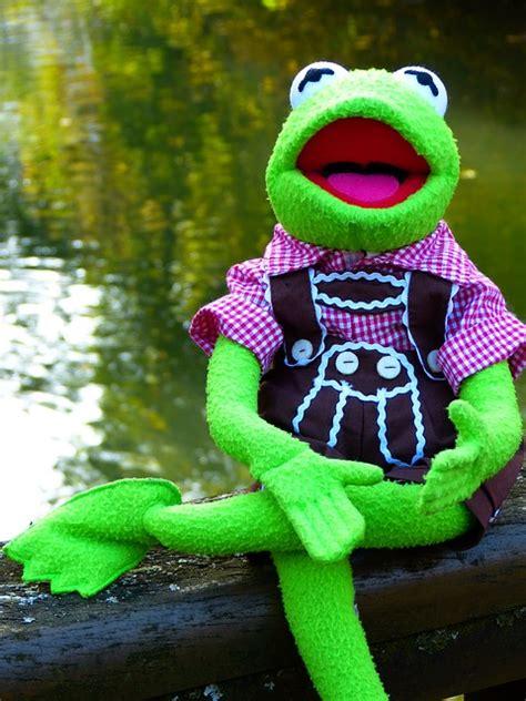 kostenloses foto kermit frosch puppe tracht