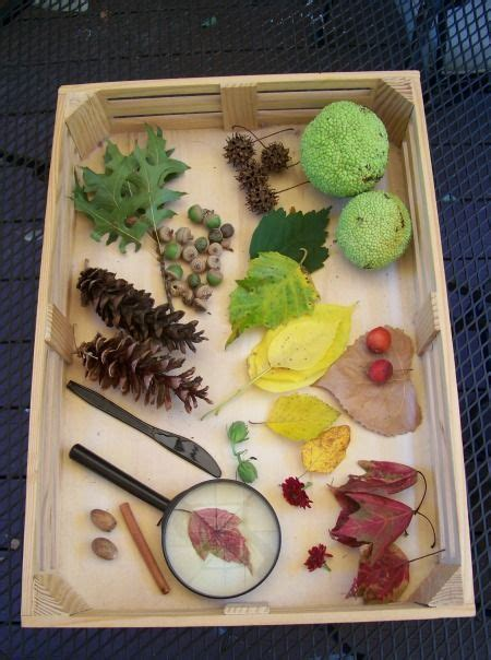 craft ideas for 344 best fall preschool ideas images on 3832