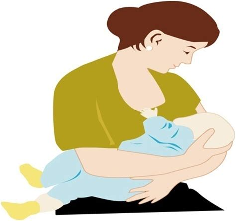 Ibu Menyusui Vector Breastfeeding Myths And Facts