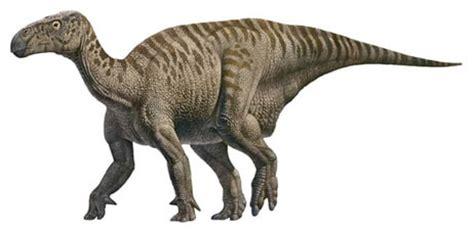 le de chevet dinosaure les d 233 couvertes de fossiles de dinosaures en au xx 232 me si 232 cle