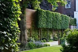 Haie Naturelle Brise Vue : haie de jardin d couvrez les secrets des plantes brise vue ~ Premium-room.com Idées de Décoration