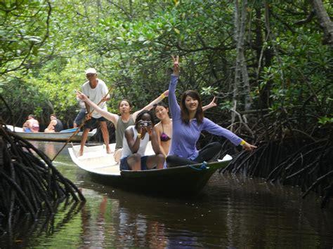 hutan mangrove nusa lembongan menjadi daya tarik