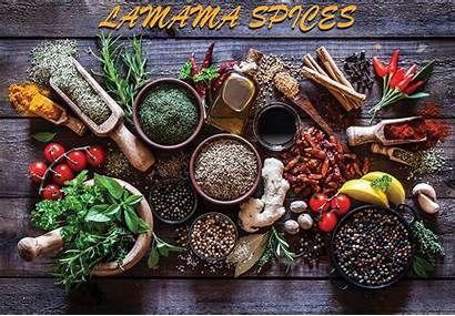 Foods Oriental History