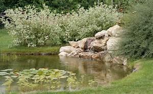 quelle piece d39eau choisir pour son jardin bassin With type d isolation maison 8 piscine paysagee maison amp travaux