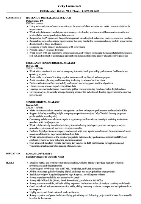 senior digital analyst resume samples velvet jobs