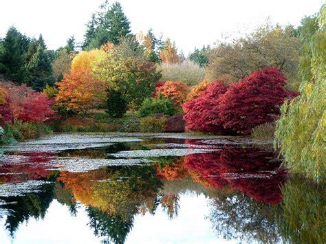 garden autumn file autumn colours at vandusen botanical garden jpg wikimedia commons