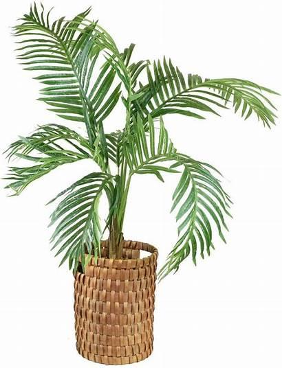 Basket Plant Palm Paradise Tropical Faux Handle