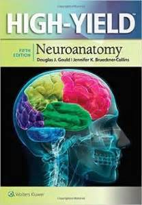 Download gray's clinical anatomy pdf free   All medical ...